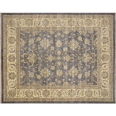 Darby Home Co Leann Hand-Knotted Indoor Area Rug