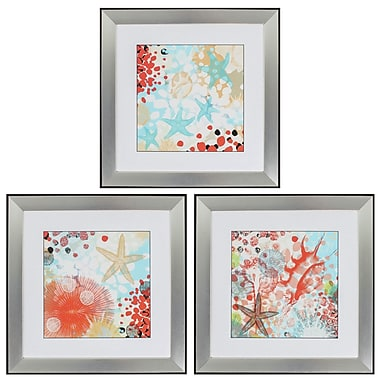 Propac Images 'Exotic Sea Life' 3 Piece Framed Graphic Art Set