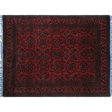 World Menagerie Alban Tribal Hand-Knotted Red Oriental Fringe Border Area Rug
