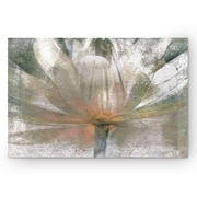 WexfordHome ''Lily Light'' by Mike Calascibetta Painting Print on Wrapped Canvas