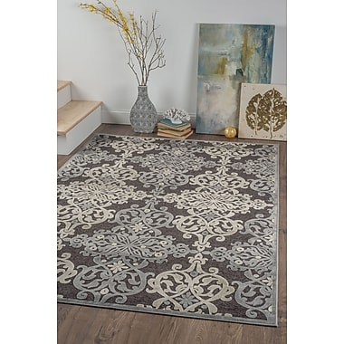 Cambridge CBR1718 Charcoal Transitional Area Rugs
