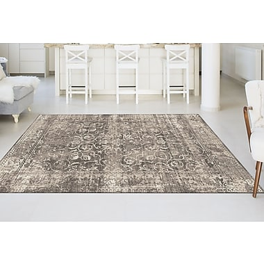 Concept CNC1013 Beige Transitional Area Rugs