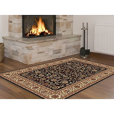 Sensation 4813 Black Transitional Area Rugs