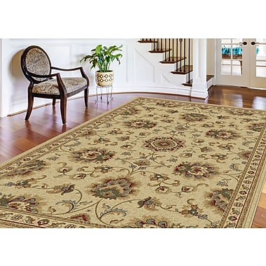 Sensation 4852 Ivory Traditional Area Rugs