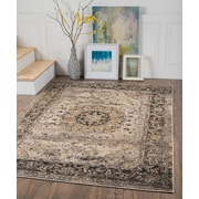 Winslow WNS1309 Gray Area Rugs