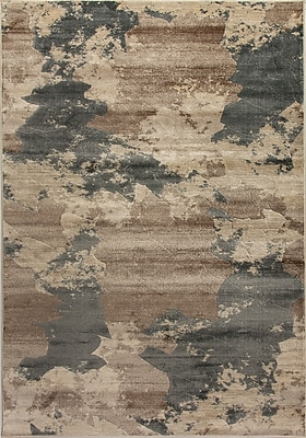 Dynamic Rugs Treasure II Taupe/Dark Gray Area Rug; Rectangle 3'6'' x 5'6''