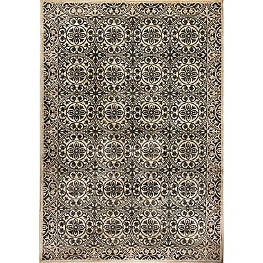Dynamic Rugs Treasure II Cream/Gray Area Rug; 2' x 3'5''