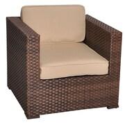 International Home Miami Aventura Arm Chair w/ Cushion (Set of 2); Beige