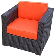 International Home Miami Aventura Arm Chair w/ Cushion (Set of 2); Polyester Orange