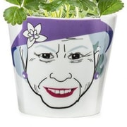 Donkey Products Queen Ceramic Pot Planter; 5.75'' H x 5.8'' W  x 5.8'' D