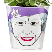 Donkey Products Queen Ceramic Pot Planter; 3.9'' H x 4.25'' W x 4.25'' D