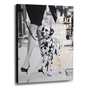 DEMDACO 'Black and White' Photographic print on Wrapped Canvas
