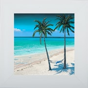 Pictures and Mirrors 'Beach Palm I' Framed Graphic Art