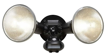 Cooper Lighting 2-Light Flood Light; Black