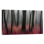 Global Gallery 'Red Wood' by Gilbert Claes Graphic Art on Wrapped Canvas; 19'' H x 30'' W x 1.5'' D