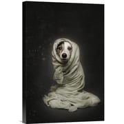 Global Gallery 'Wrapped' by Heike Willers Photographic Print on Wrapped Canvas