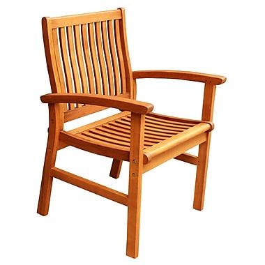 ALKBrands LuuNguyen Hawaii Patio Arm Chair
