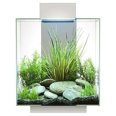 Hagen 12 Gallon Edge Aquarium Kit