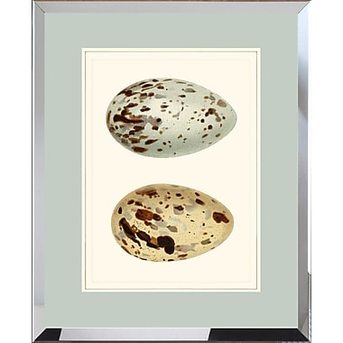 Hand Colored Art Double Egg Framed Giclee Print; 22'' H x 18'' W