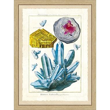 Hand Colored Art Gem Study Framed Giclee Print; 26'' H x 22'' W