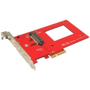 "Addonics® NVMe 2 1/2"" U.2 SSD PCIe Adapter (AD25NVMPX4)"