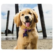 Fellowes® Recycled Mouse Pad, Puppy at Beach (5916401)