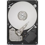 "Seagate® Barracuda 160GB 3.5"" SATA 3Gb/s Internal Hard Drive (Silver)"