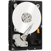 "WD  Re    SATA 6 Gbps 3.5"" Datacenter Capacity Internal Hard Drive, 3TB (WD3000FYYZ)"