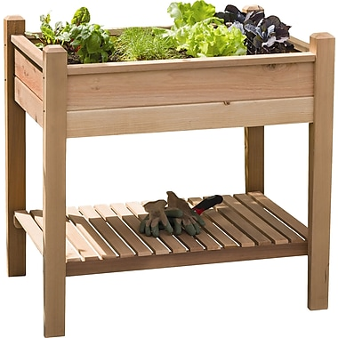 Buyers Choice Phat Tommy 3 ft x 2 ft Cedar Raised Garden