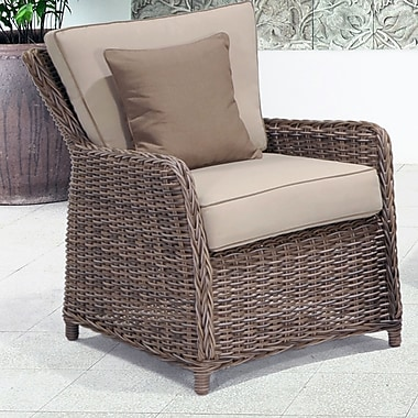 Wildon Home Kameron Lounge Chair w/ Cushion (Set of 2)