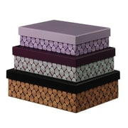Scantrends Dots Paper Boxes (Set of 3)