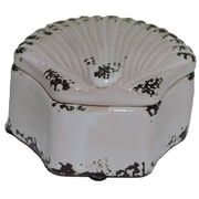 Sagebrook Home Marina Shell Shaped Distressed Box