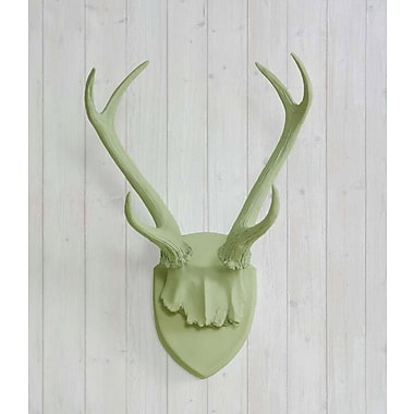 Wall Charmers Faux Taxidermy Antler ; Sage Green