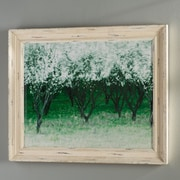 Charlton Home Spring Wind Painting Print; 24'' H x 36'' W x 0.1'' D