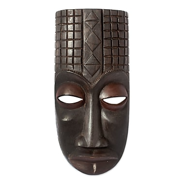 Novica Congo Purification Artisan Carved Congolese Ritual Mask Wall D cor