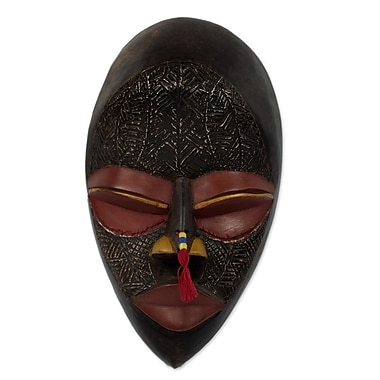 Novica Hand Carved Wood Mask Wall D cor