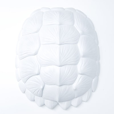Near and Deer Replica Gator Turtle Shell Wall D cor; White