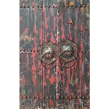 Empire Art Direct ''Antique Wooden Doors 1'' Mixed Media Iron Hand Painted Dimensional Wall D cor