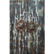 Empire Art Direct ''Antique Wooden Doors 2'' Mixed Media Iron Hand Painted Dimensional Wall D cor