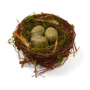 SheasWildflowers Decorative Twig and Moss Nest w/ Eggs Figurine