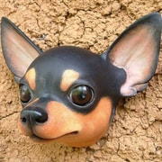 Novica 'Courageous Black' Chihuahua Mask Wall D cor