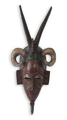 Novica Baule Tribe Warrior Mask Wall D cor