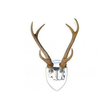 Near and Deer Faux Taxidermy Deer Antler Wall D cor; Silver/Natural