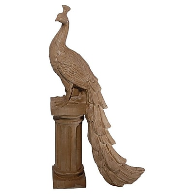 A&B Home Hepburn Peacock Decor WYF078280035928