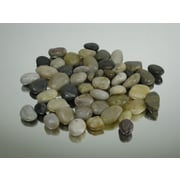 WGVInternational Decorative River Rocks; Large
