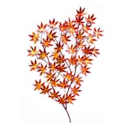 Peterson Housewares Inc. Late Autumn Wall D cor