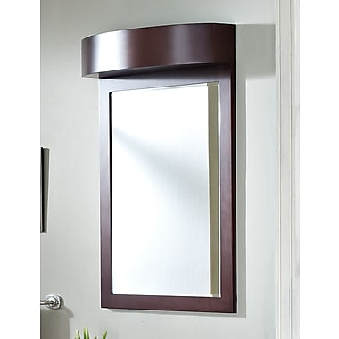 American Imaginations Transitional Wall Mirror; Stainless Steel