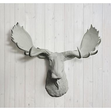 Wall Charmers Alberta Faux Taxidermy Moose Head Wall D cor; Gray