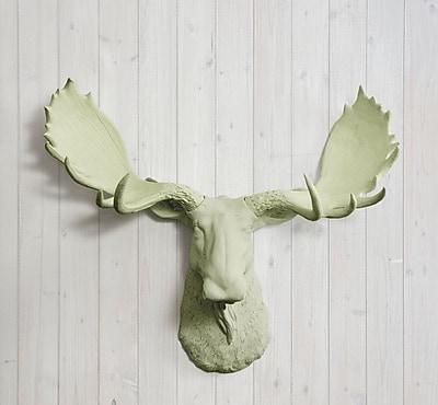 Wall Charmers Alberta Faux Taxidermy Moose Head Wall D cor; Sage Green