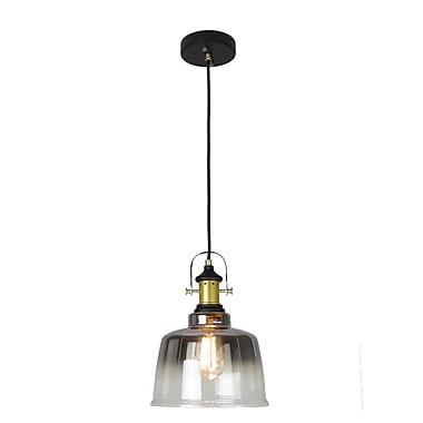 EQLight NY Industrial 1-Light Mini Pendant